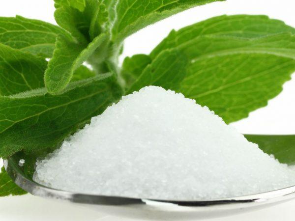verse stevia rebaudiana en suiker in een lepel