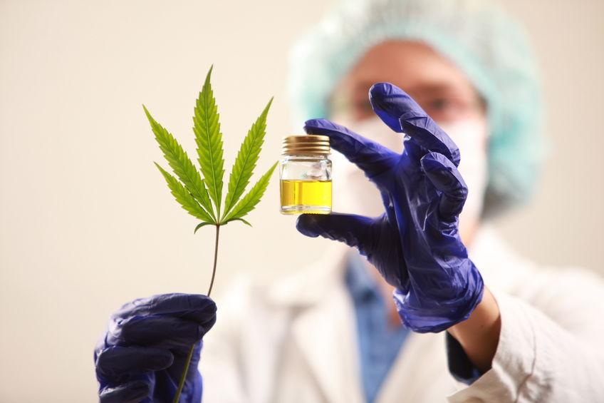 Vrouw arts die een een cannabisblad en olie houdt. Alternatieve geneeskunde