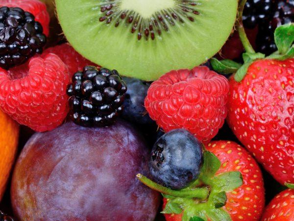 fruit rijk aan resveratrol