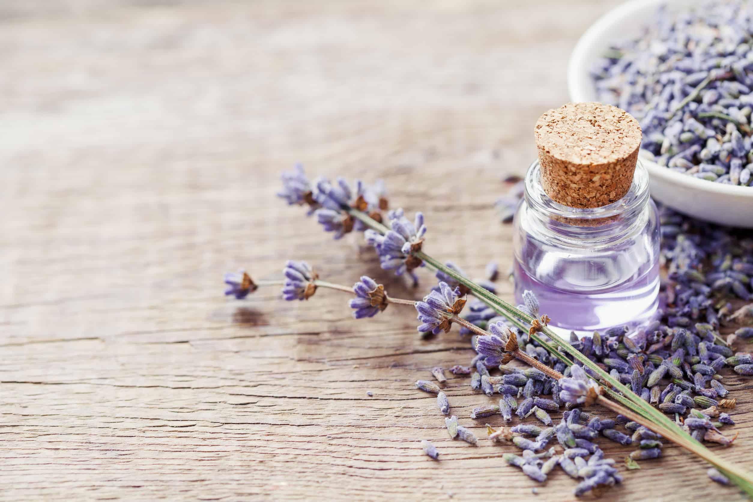 Lavendelolie: Wat zijn de beste producten van (09/21)?