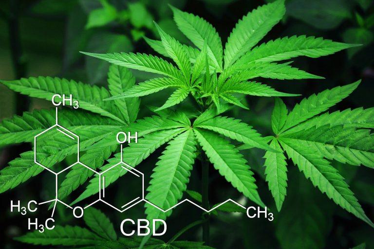 CBD-Öl Nebenwirkungen-1