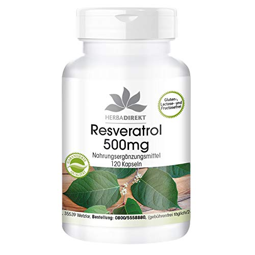 Resveratrol 500mg - Hoge dosering - Knotweed extract - 120 capsules
